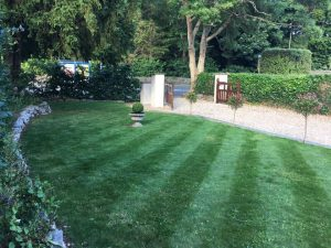 Lawn cutting for a client in the Torbay area