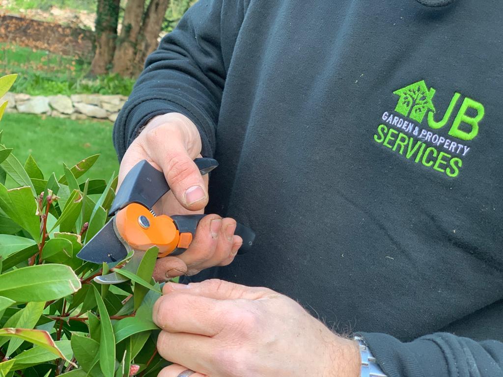 Pictur of Joe Bristow - Gardening Services Torquay