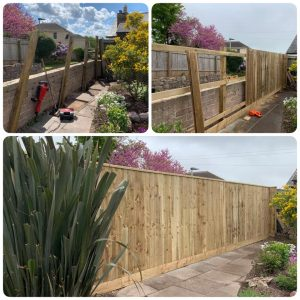 Picture of Garden fencing in Torquay before and after by Joe