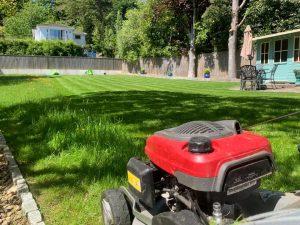 Gardening Services Torquay